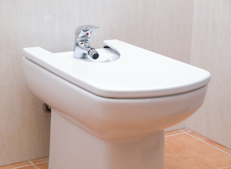 In Home Safety for the Elderly-Bidet in a Bathroom