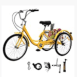 Eosaga Adult Tricycle Review
