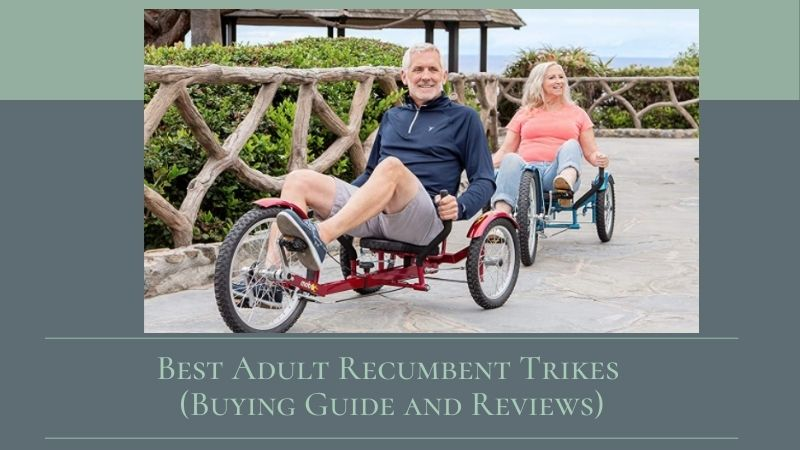 Best Adult Recumbent Trikes (Buying Guide and Reviews 2021)