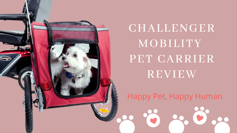 Challenger Mobility Scooter Pet Carrier Review