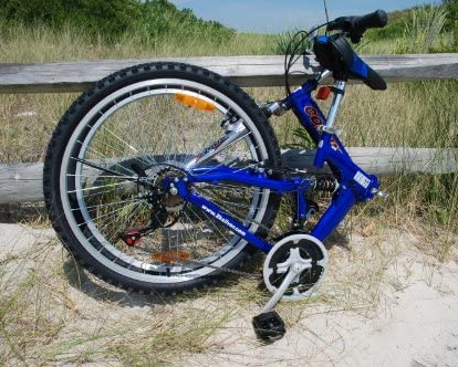 Living Your Senior Life - Folding Bike